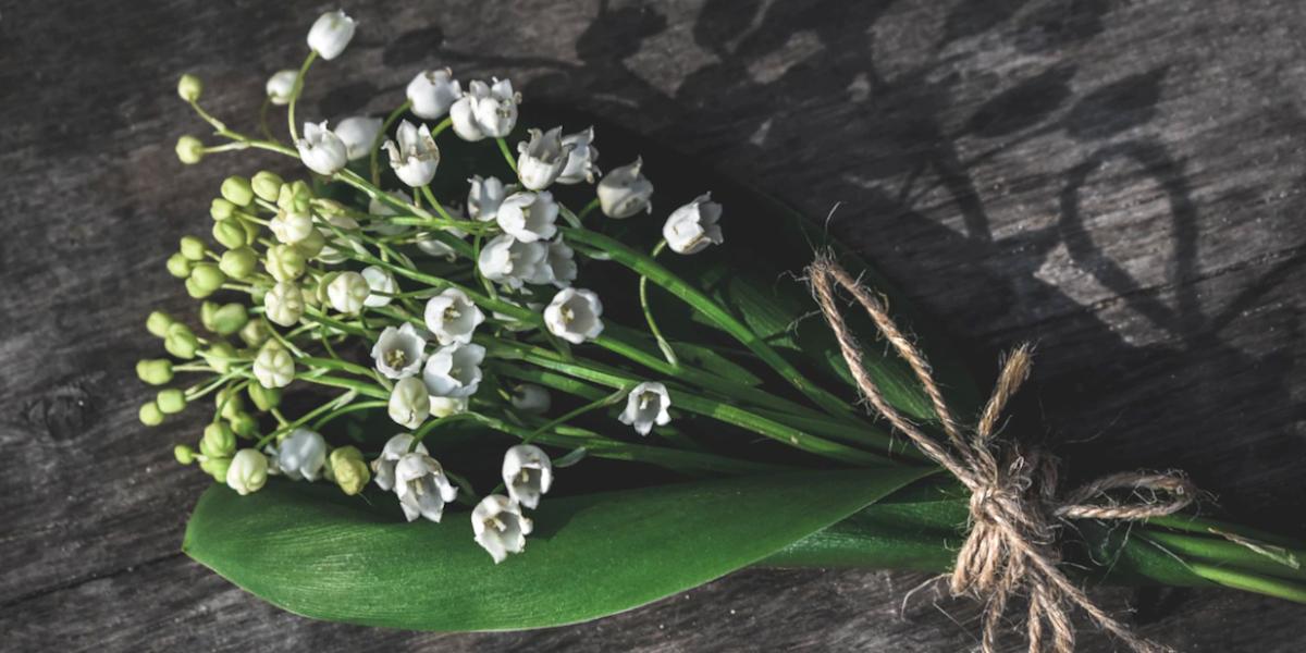 1er mai: Le sabbat de Beltane